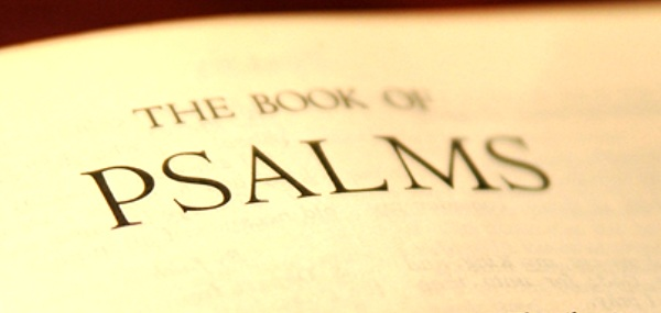 My Favorite Book In The Bible Nizy S Life Compendium